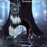 Dreamcatcher Lưới Bắt Giấc Mơ Dạ Quang Kèm Hộp Quà Tặng
